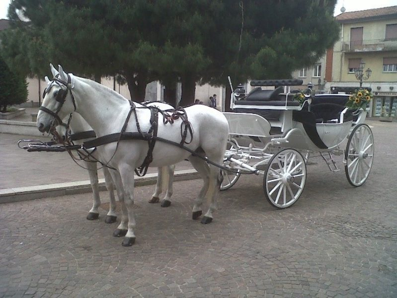Carrozza Bianca Interno Blu